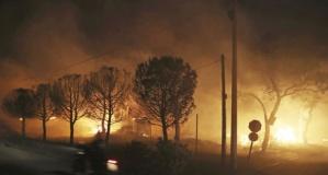 Yunanistan'daki orman yangınları felaketi