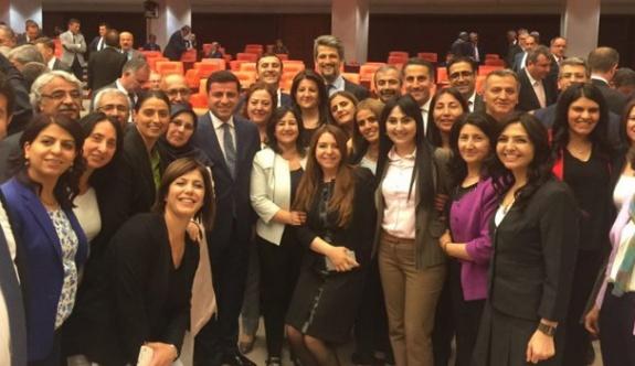 HDP'li vekille hapis cezası