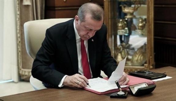 'Erdoğan bazı maddeleri veto edebilir'
