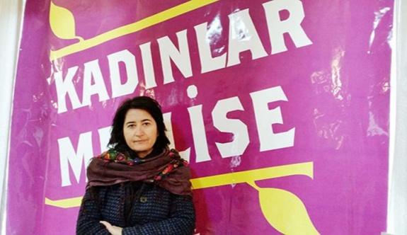 HDP'de yeni eşbaşkan belli oldu