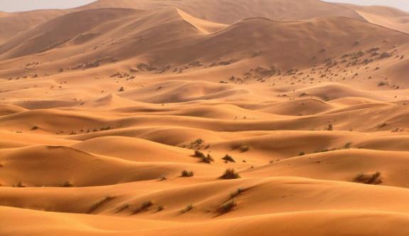 3'ü bebek 44 göçmen Sahra Çölü'nde susuzluktan öldü