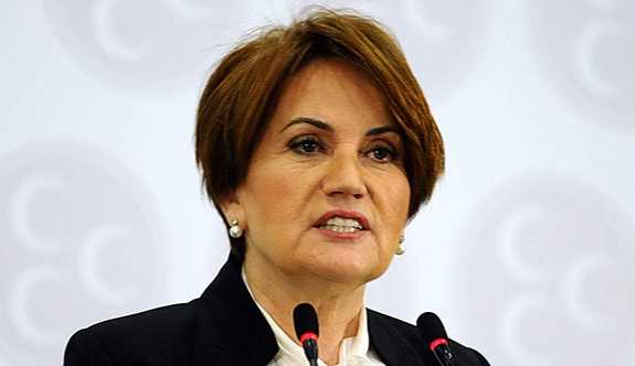 Akşener'in liderliğinde kurulacak partide 'bozkurt ve 'Başbuğ' yasağı