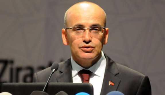 Başbakan Yardımcısı Şimşek: Her şey güllük gülistanlık