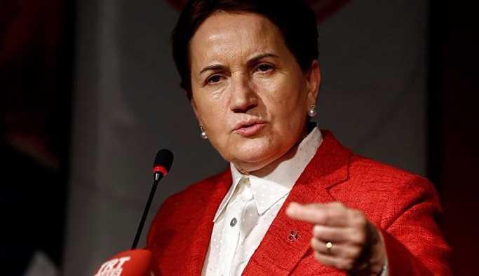 Meral Akşener'in partisinin logosu ve kurucu listesi belli oldu