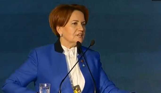 Meral Akşener partisini kurdu
