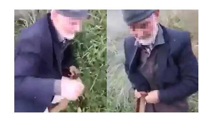 Köpeğe tecavüz eden 82 yaşındaki N.C.'yi gözaltına alındı