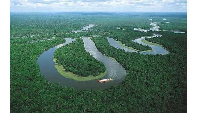 Amazonlarda 143 bin hektar orman yok oldu