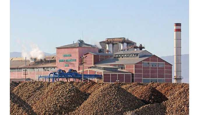 AKP'nin bir yalanı daha: Şeker fabrikaları zarar değil kâr ediyor