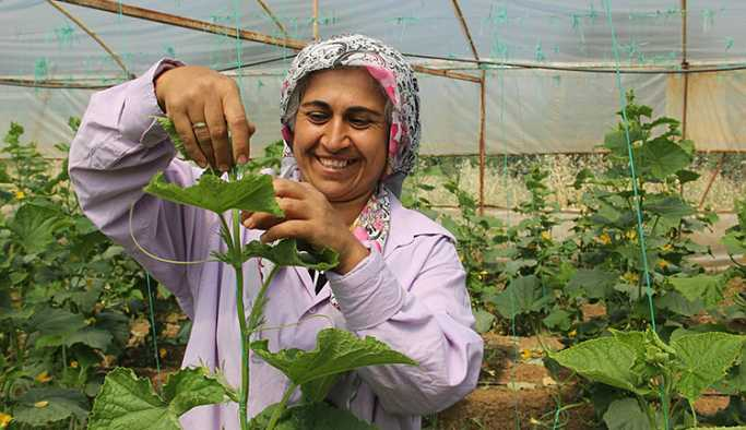 HDP adayı tarım işçisi bir kadın: Halime Akdağ