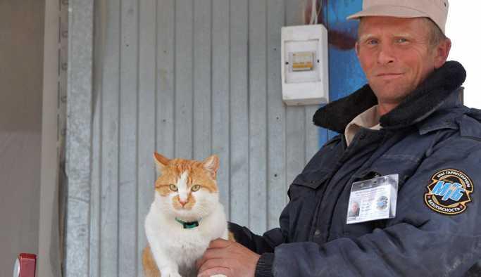 Kırım Köprüsü'nü Putin'den önce kedi Mostik denetledi