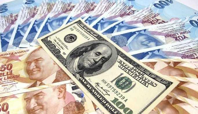 Türk Lira'sındaki değer kaybının sebebi ne?