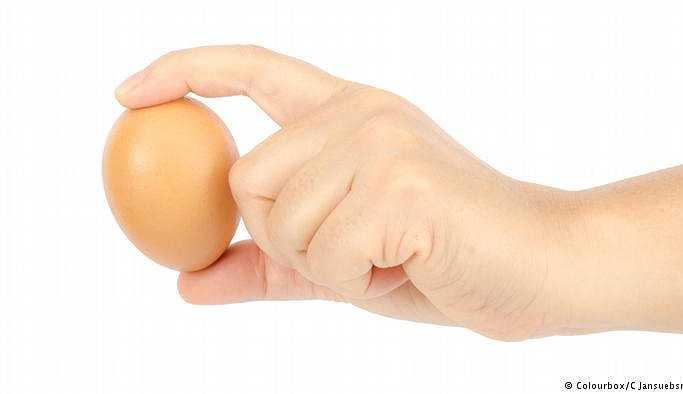 Günde bir yumurta kalbi korur mu?