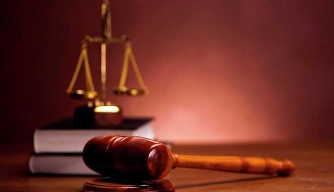 Hindistan'da mahkeme, insanlarla hayvanların eşit hakları olduğuna hükmetti