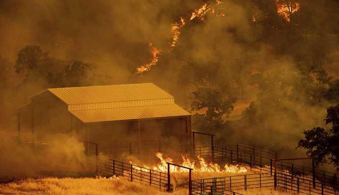 'Kaliforniya'daki yangın komşu husumetinden çıkarıldı'