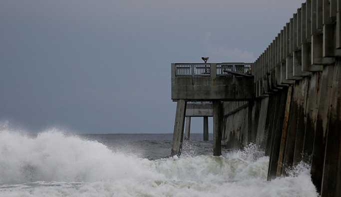 'Ölümcül' Michael Kasırgası Florida'yı tehdit ediyor