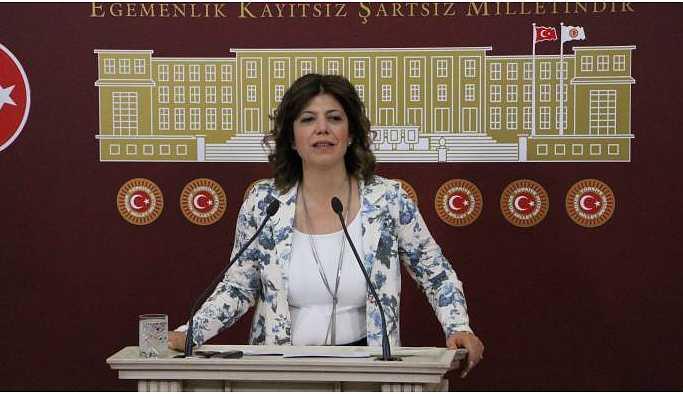 Beştaş: İçişleri Bakanı'nın saldırganlığı tedavi edilmeli