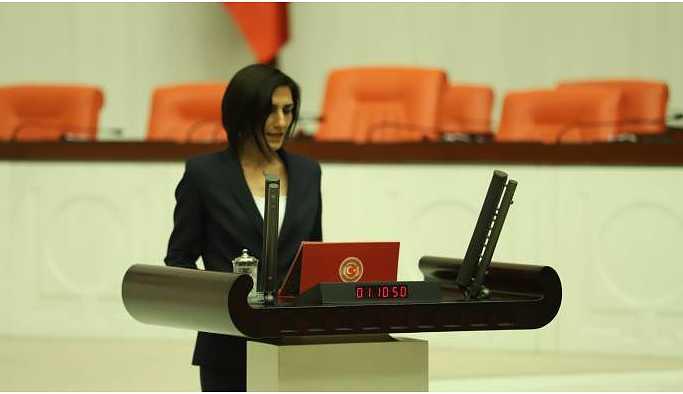 HDP'li Coşkun Sağlık Bakanı'na hastanelerdeki yetersizlikleri sordu