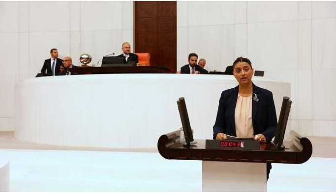 Uca: Leyla Güven Meclis'te olmalı