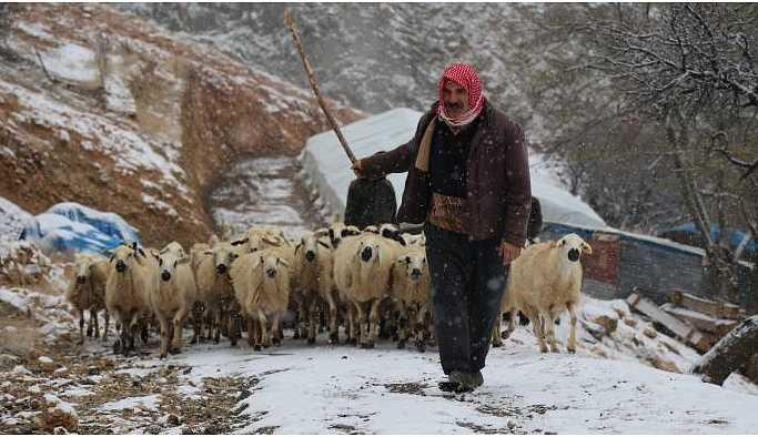 'Dersim'de kış zorludur ama köyümüzde olduğumuz için huzurluyuz'