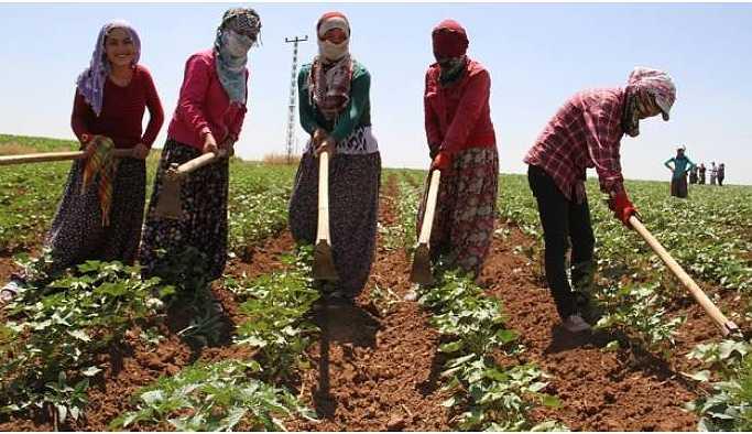 HDP'den kadın iş cinayetlerinin araştırılmasını istedi