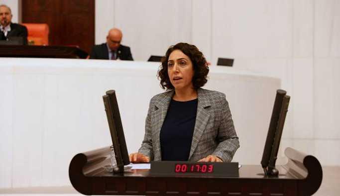 HDP'li Aydeniz, uyuşturucu kullanımı için Meclis araştırması istedi