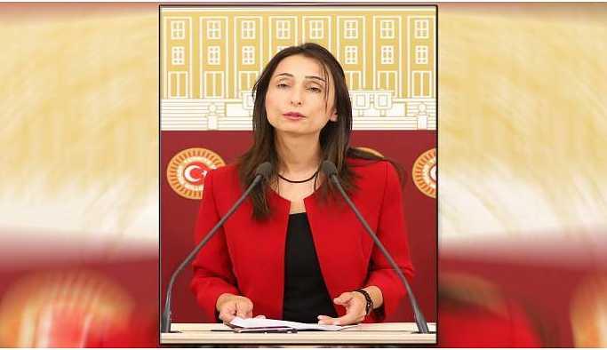 HDP'li Kıran'ın darp edilmesi Meclis'e taşındı