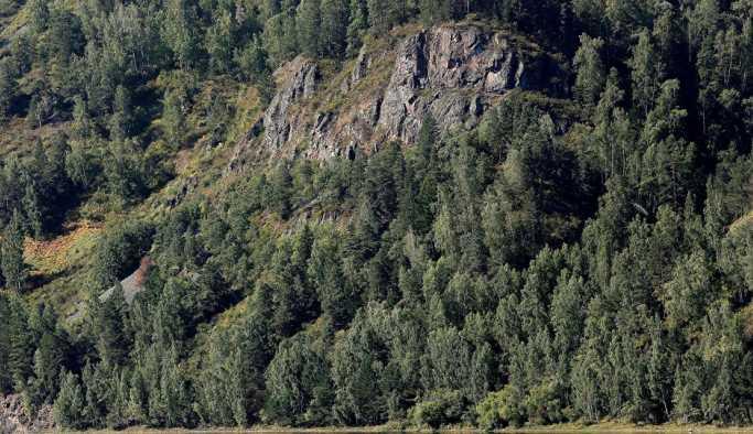 Rusya'da helikopter düştü: 4 ölü