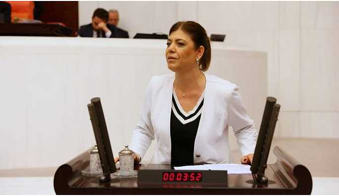 Siirt'te 'satılan taşınmaz' Meclis gündeminde