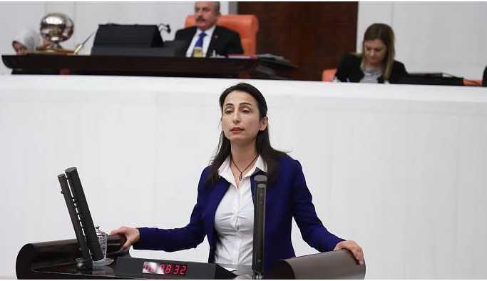 HDP'li Hatimoğulları'ndan Bakan Kurum'a havaalanı sorusu