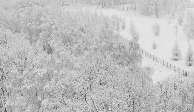 Moskova'da 140 yılın en şiddetli kar yağışı görüldü