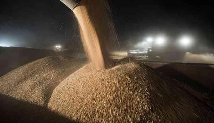 'Rusya, Kuzey Kore'ye karşılıksız olarak 50 bin ton buğday tedarikini değerlendiriyor'