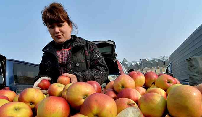 Türkiye'den giden 19 ton elmanın Rusya'ya girişine izin verilmedi