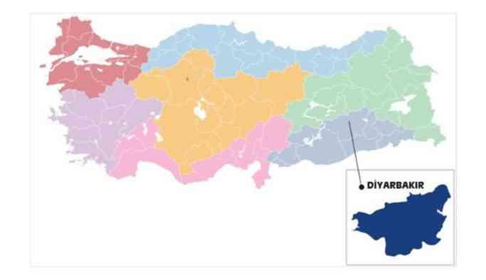 31 Mart Diyarbakır yerel seçim sonuçları