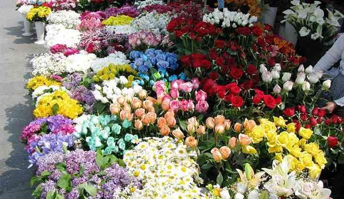 AKP'li belediye 1 yılda 8 milyonluk çiçek almış