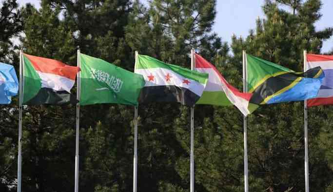 Antep Üniversitesi'nde Suriye yerine ÖSO bayrağı