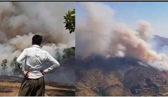 Operasyon bölgesinde yangın: Köylülere ait hayvanlar yanarak can verdi