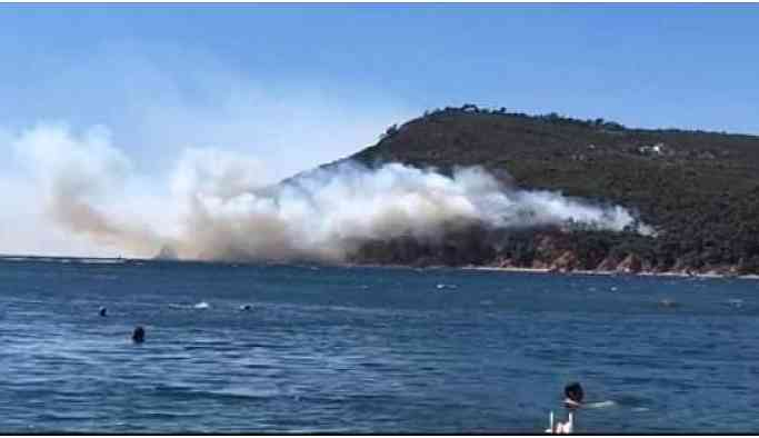 Burgazada'da yangın