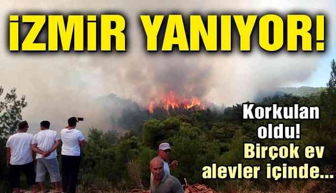 İzmir'de yangın köylere sıçradı