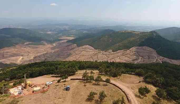 teyit.org, Kaz Dağları'ndaki altın madeni için kaç ağaç kesildiğini açıkladı