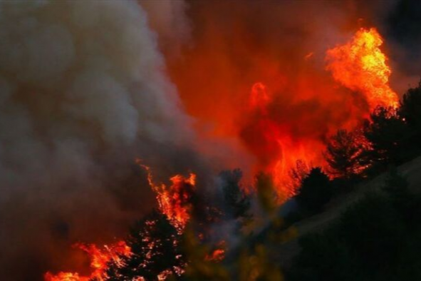 Hatay'da aynı anda 25 noktada orman yangını