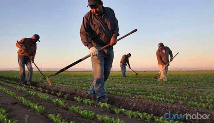 Çiftçi tarımsal destek ödeneğini bekliyor: 'Şov yapıldı'
