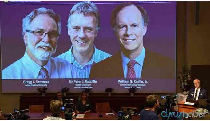 Nobel Tıp Ödülü'nü kazanan isimler belli oldu