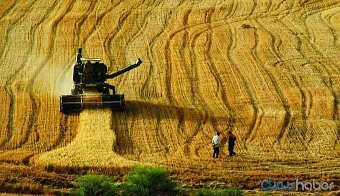 AKP'li vekil Tarım Bakanına seslendi! Çiftçiler geri gidiyor