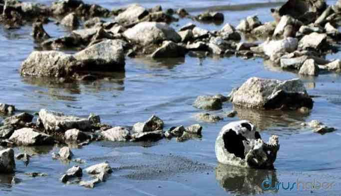 Van Gölü'nde sular çekilince insan kemikleri ortaya çıktı