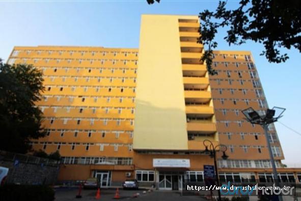 Çinli turist çift Süreyyapaşa Hastanesi'ne sevk edildi
