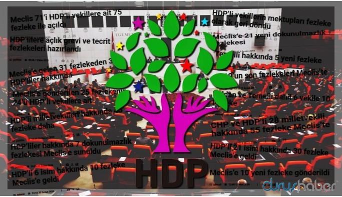 HDP'lilere 7 ayda 320 fezleke
