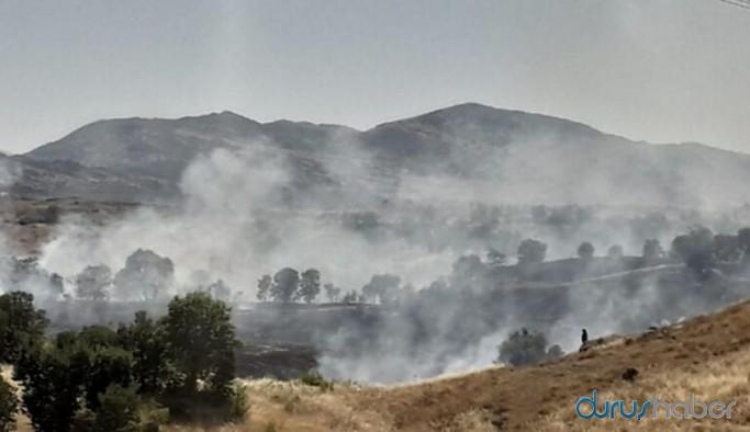 Diyarbakır'da yangın: 300 dönümlük alan kül oldu