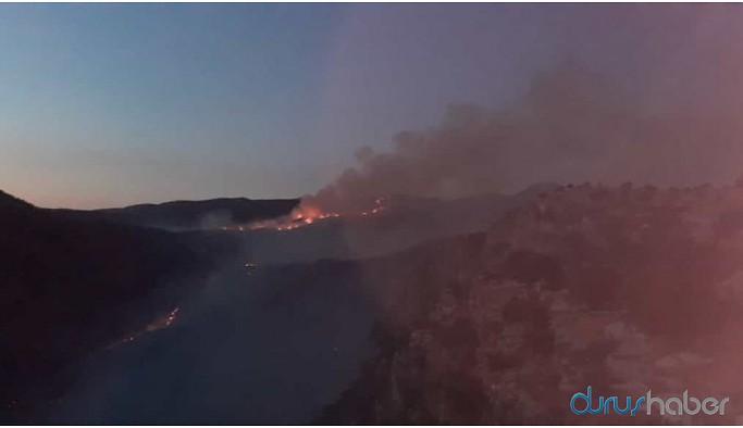 Gabar Dağı'ndaki yangını köylüler söndürmeye koyuldu