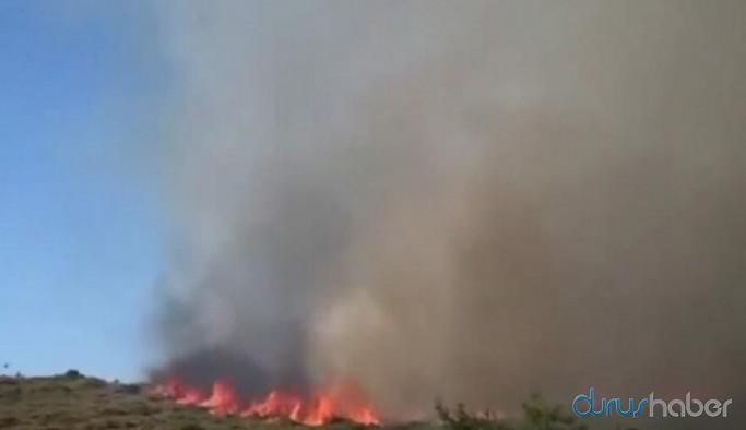 İzmir'de otluk ve makilik alanda yangın