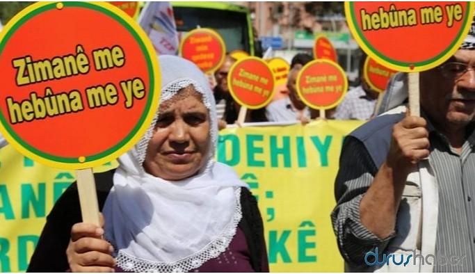 'Kürtçe örgütsel bir dil olarak mı kabul edilmektedir?'